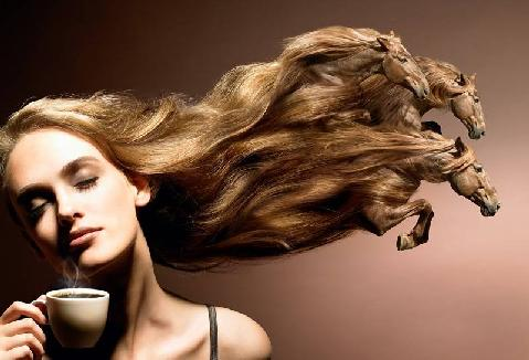 cavalos_de_cabelos