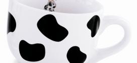 O Boticário Fun Milk – Acessórios