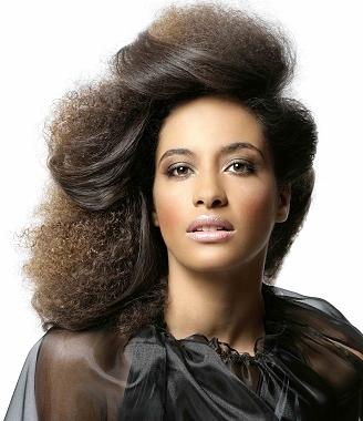 penteados-para-cabelos-crespos-e-afro (10)
