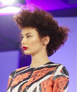 penteados-para-cabelos-crespos-e-afro (30)