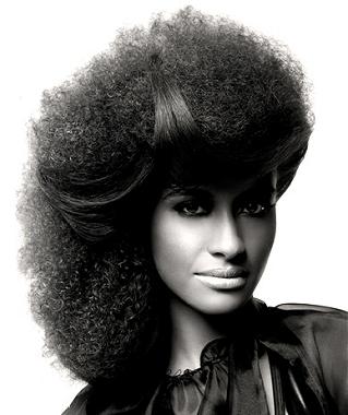penteados-para-cabelos-crespos-e-afro (7)